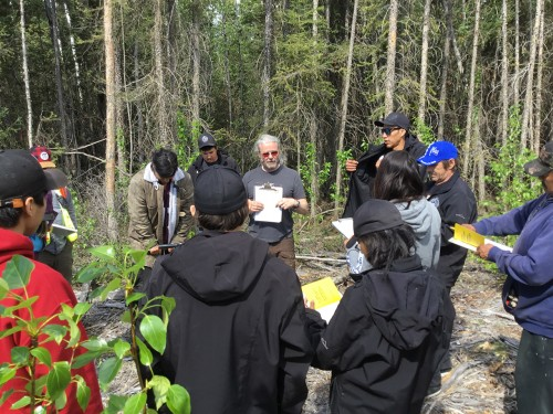 Training Dehcho Guardians on permafrost monitoring